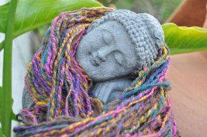 Buda quentinho